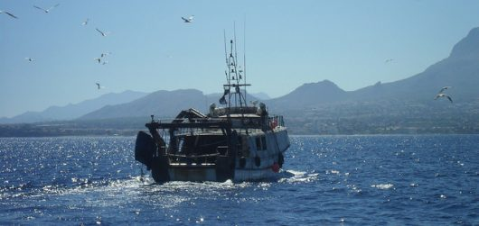 Sea Fishing in Benidorm
